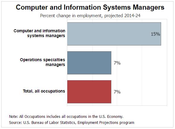 Information Technology Management Change in Employment