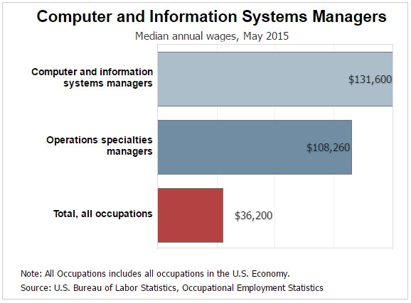 Information Technology Management Pay